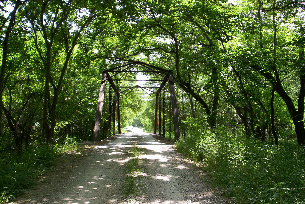 View of dirt path with forrest and trees surrounding and bridge overhead